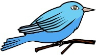 looks like a blue bird tweeting